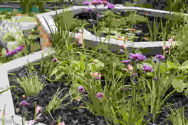 A Modern Garden with Traditional Materials Yorkshire Gardens Modern garden