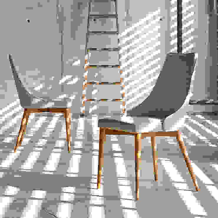 Cadeiras Chairs www.intense-mobiliario.com Spirity http://intense-mobiliario.com/product.php?id_product=8841 por Intense mobiliário e interiores; Moderno