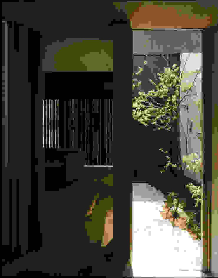 C-HOUSE モダンスタイルの 玄関&廊下&階段 の 株式会社長野聖二建築設計處 モダン