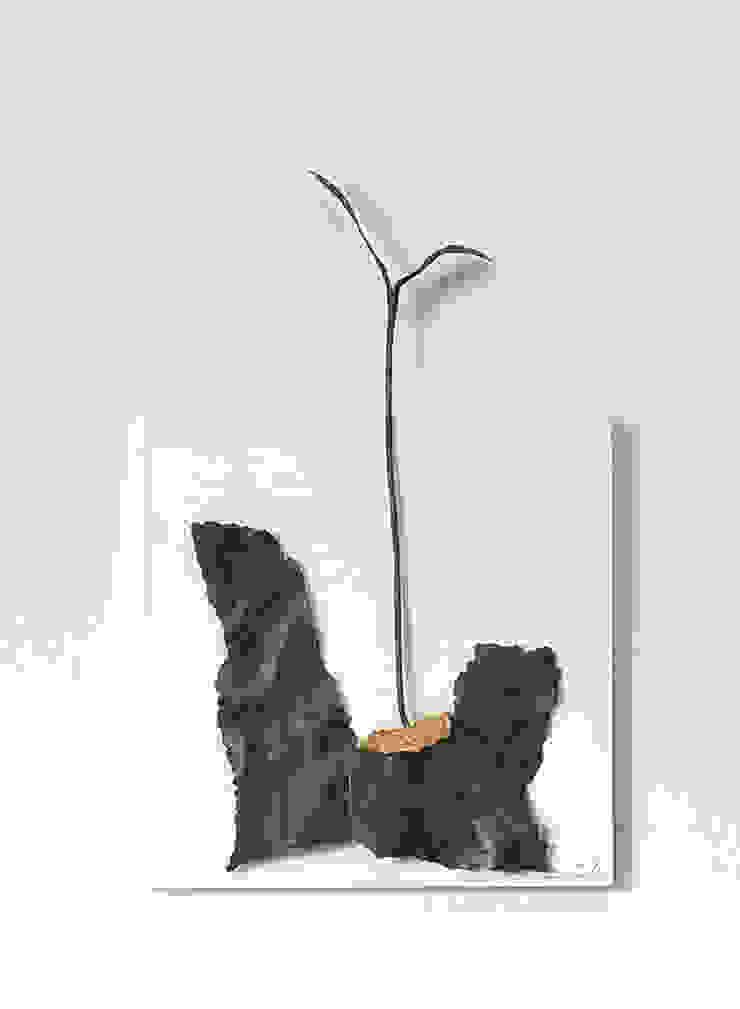 EXTINCTION AND REBIRTH 02: Rie SASAKIが手掛けた折衷的なです。,オリジナル 鉄/鋼