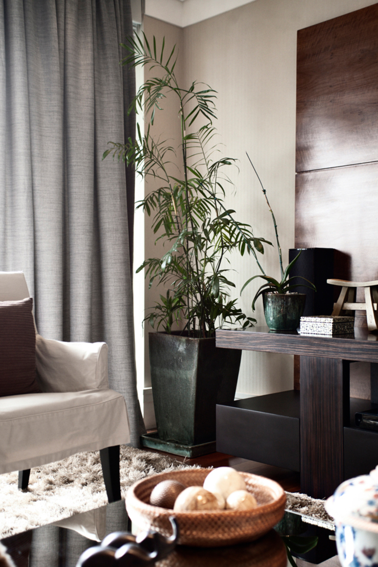 Vanderlei Camila Vicari Arquitetura da Paisagem Modern Living Room