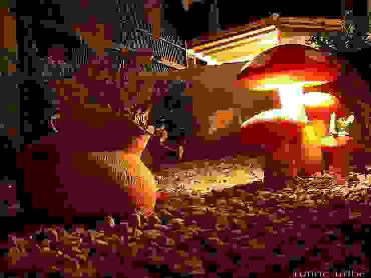 Jardines de estilo  por Akasha espacios iluminados, Clásico