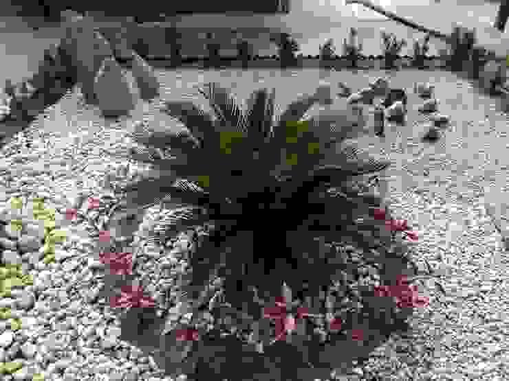 Jardines Paisajismo Y Decoraciones Elyflor Modern Garden