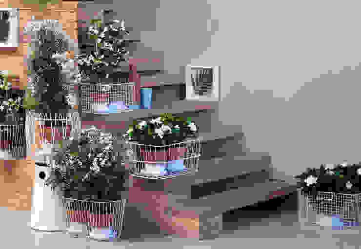 Weiße Blüten im Treppenbereich in Nahaufnahme. Pflanzenfreude.de Raumbegrünung