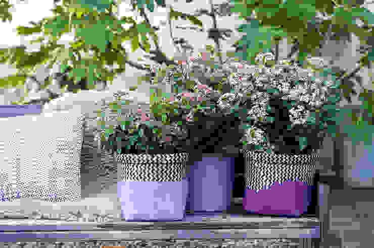 Garden by Pflanzenfreude.de, Classic