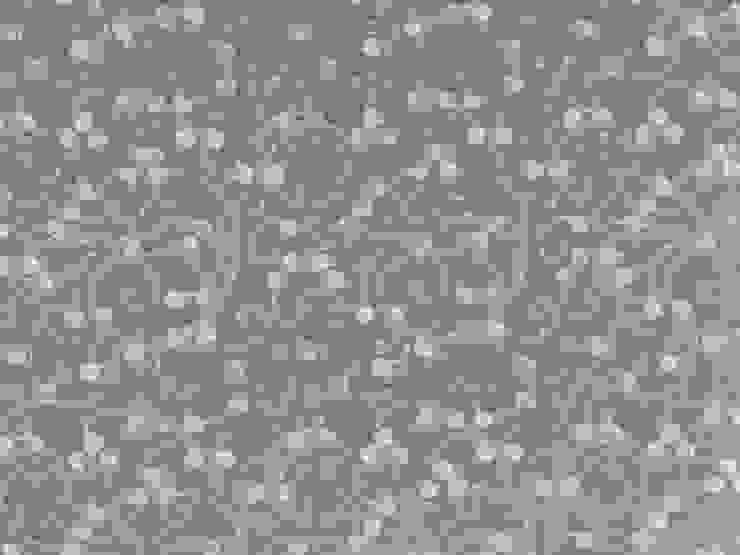 Acelna perla de Nua Colección Clásico Textil Ámbar/Dorado