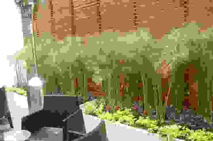 jadineria de piso de ARQUIOBRA Tropical Bambú Verde