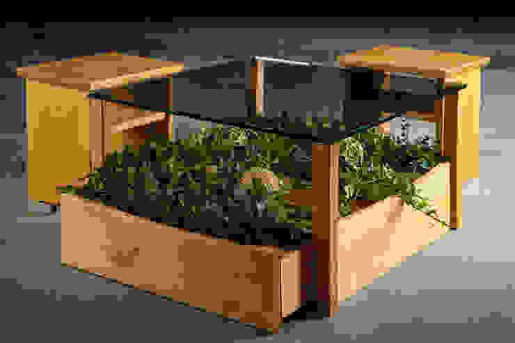 غرفة المعيشة تنفيذ Möbelmanufaktur GreenHaus,