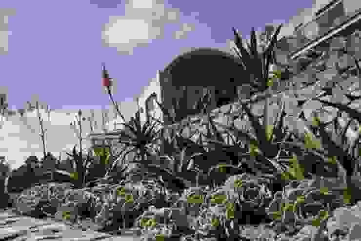 Proyectos residenciales MU paisajistas Jardines de estilo moderno