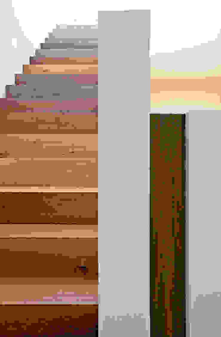 meier architekten zürich Pasillos, vestíbulos y escaleras de estilo moderno