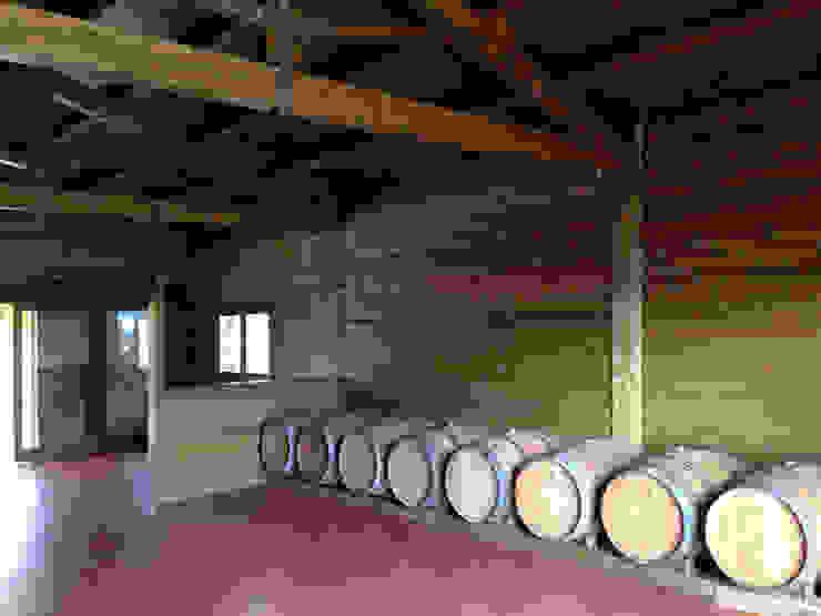 RIBA MASSANELL S.L. Cave à vin rustique Bois Effet bois
