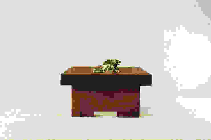 Wenge wood collection od Drwo.pl Nowoczesny