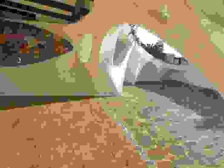 Jardin de style  par The White Room,