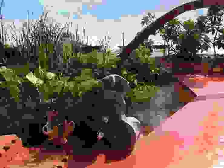 Lily pond Mediterranean style garden by The White Room Mediterranean