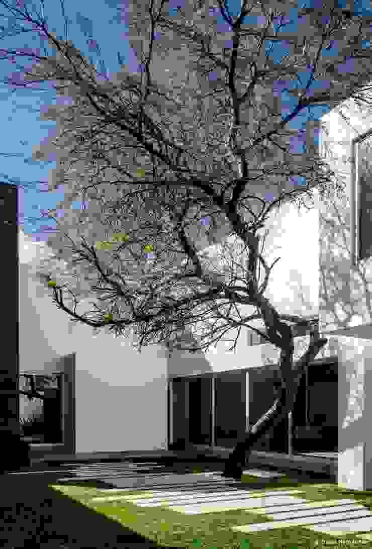 casaMEZQUITE Casas modernas de BAG arquitectura Moderno Vidrio