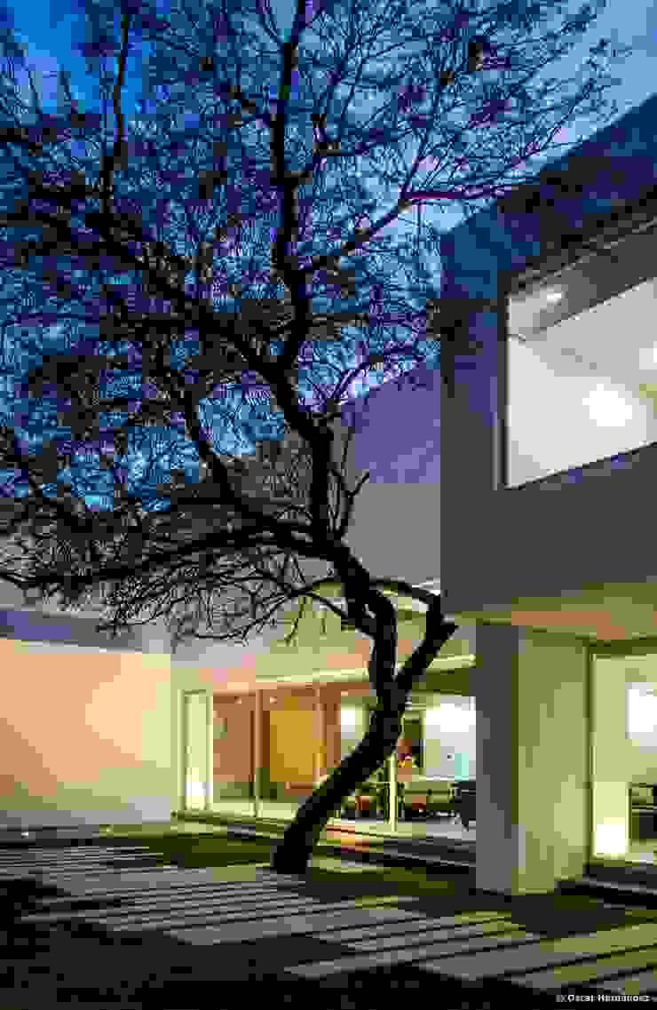 casaMEZQUITE Casas modernas de BAG arquitectura Moderno Ladrillos