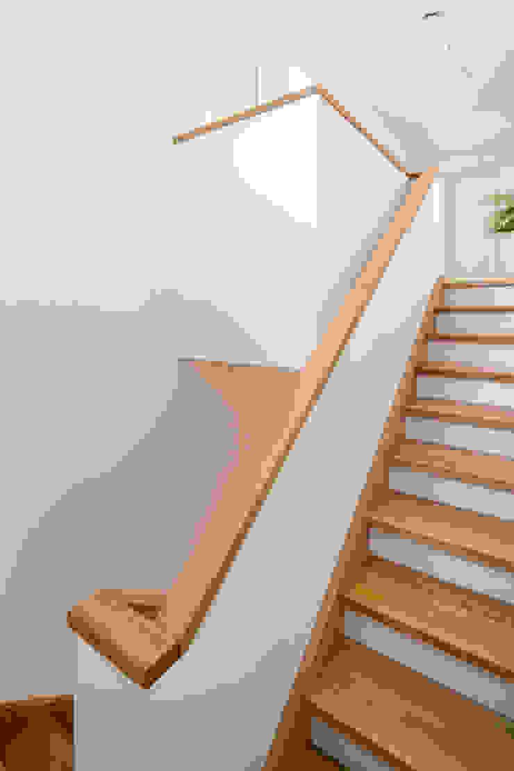 Pasillos, vestíbulos y escaleras de estilo moderno de puschmann architektur Moderno