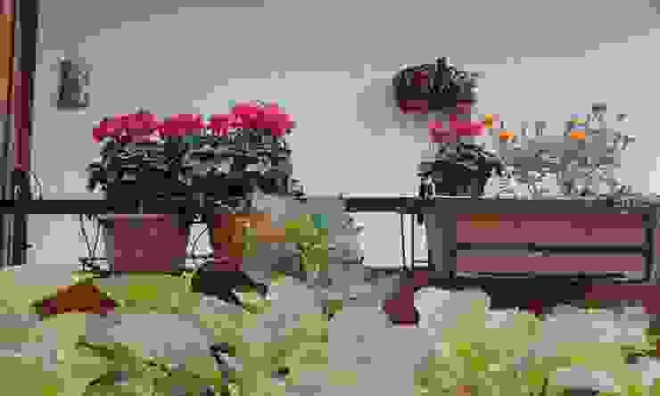 immobiliare sublacense Balconies, verandas & terracesPlants & flowers