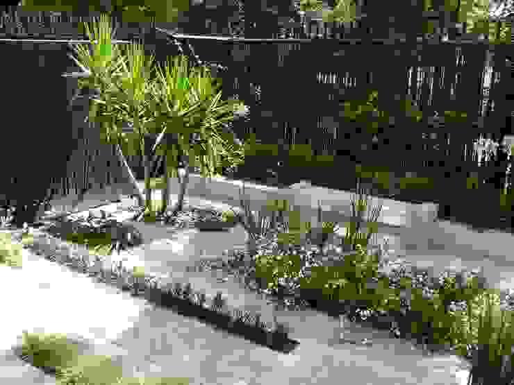 Rainures végétales Balcon, Veranda & Terrasse modernes par Anthemis Bureau d'Etude Paysage Moderne
