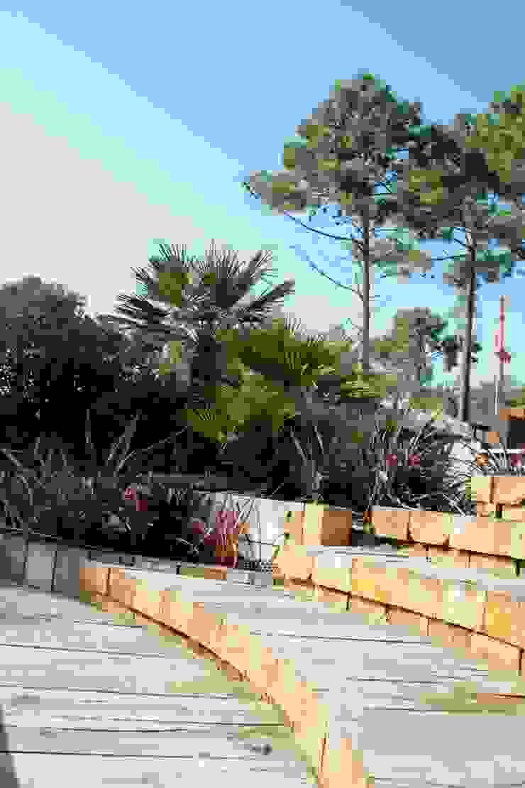 Inspirations Jardin moderne par Anthemis Bureau d'Etude Paysage Moderne