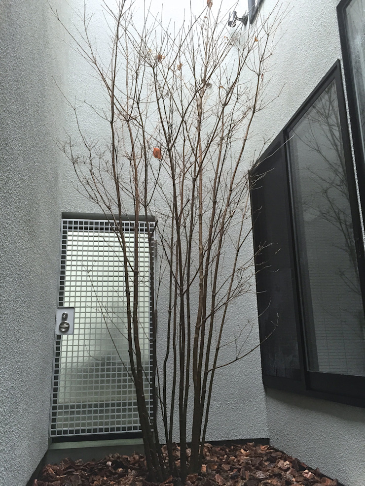 Shikinowa Design Jardin moderne