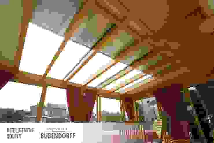 Inteligentne Rolety Bubendorff Modern conservatory Aluminium/Zinc