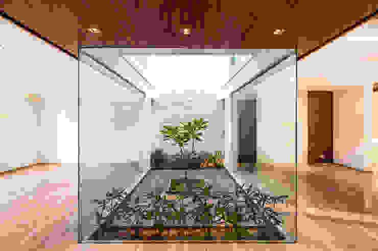 Minimalist style garden by homify Minimalist
