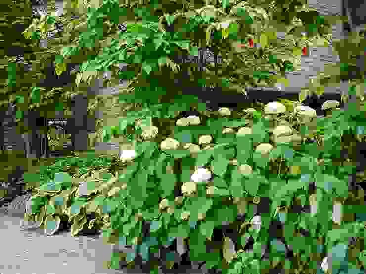 GARDEN: (有)ハートランドが手掛けた庭です。,モダン