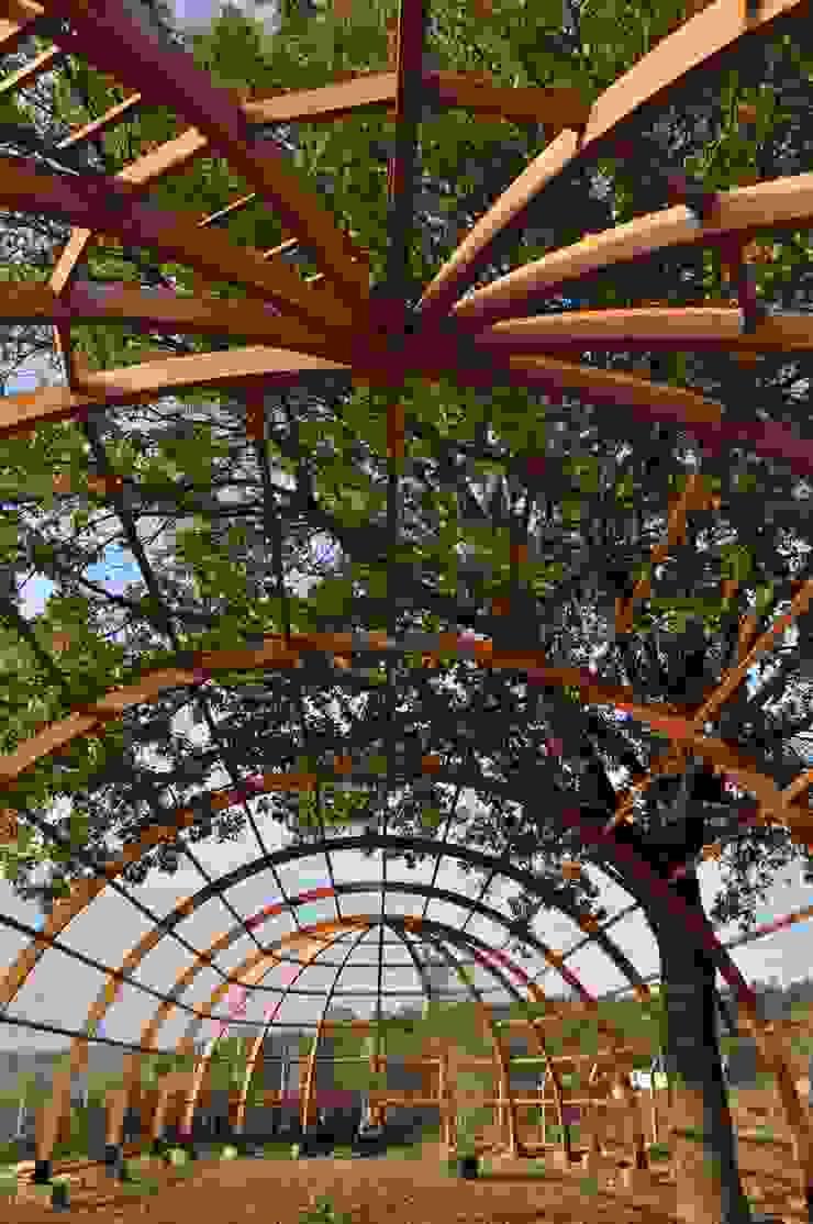 Ahşap Yapılar Endüstriyel Bahçe Amazon Wooden İnş. Müh. San. Tic. Ltd. Şti. Endüstriyel Ahşap Ahşap rengi
