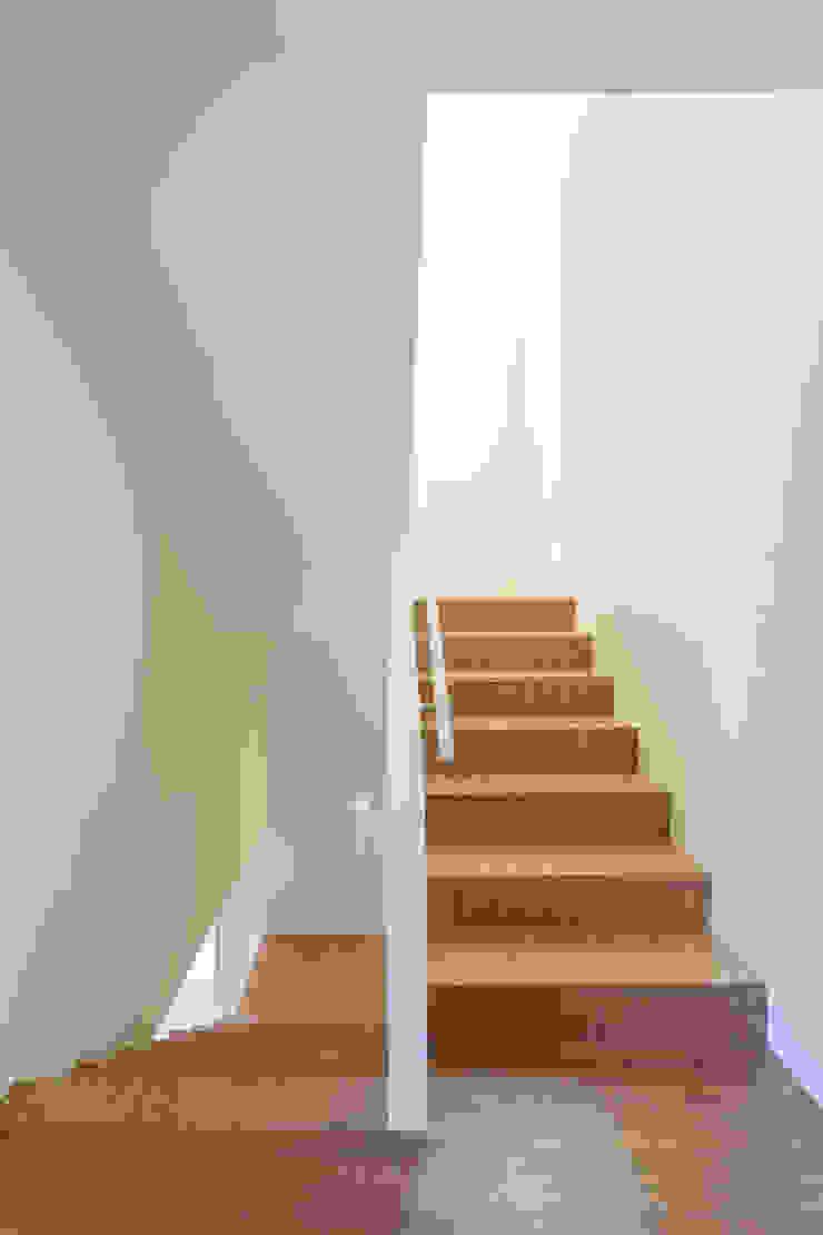 Modern Corridor, Hallway and Staircase by Studio Dois Modern