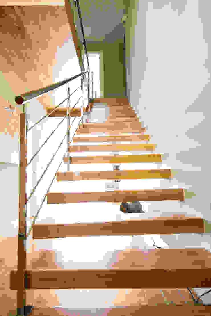 MODULAR HOME Modern corridor, hallway & stairs