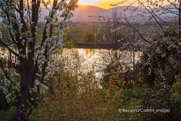 Taman Gaya Country Oleh Rosanna Castrini Garden Photography Country