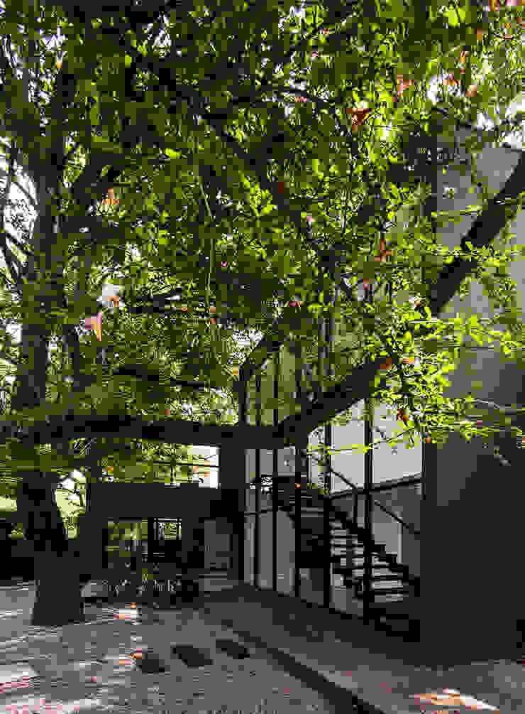 Modern Garden by Alice Martins Flávio Butti Modern