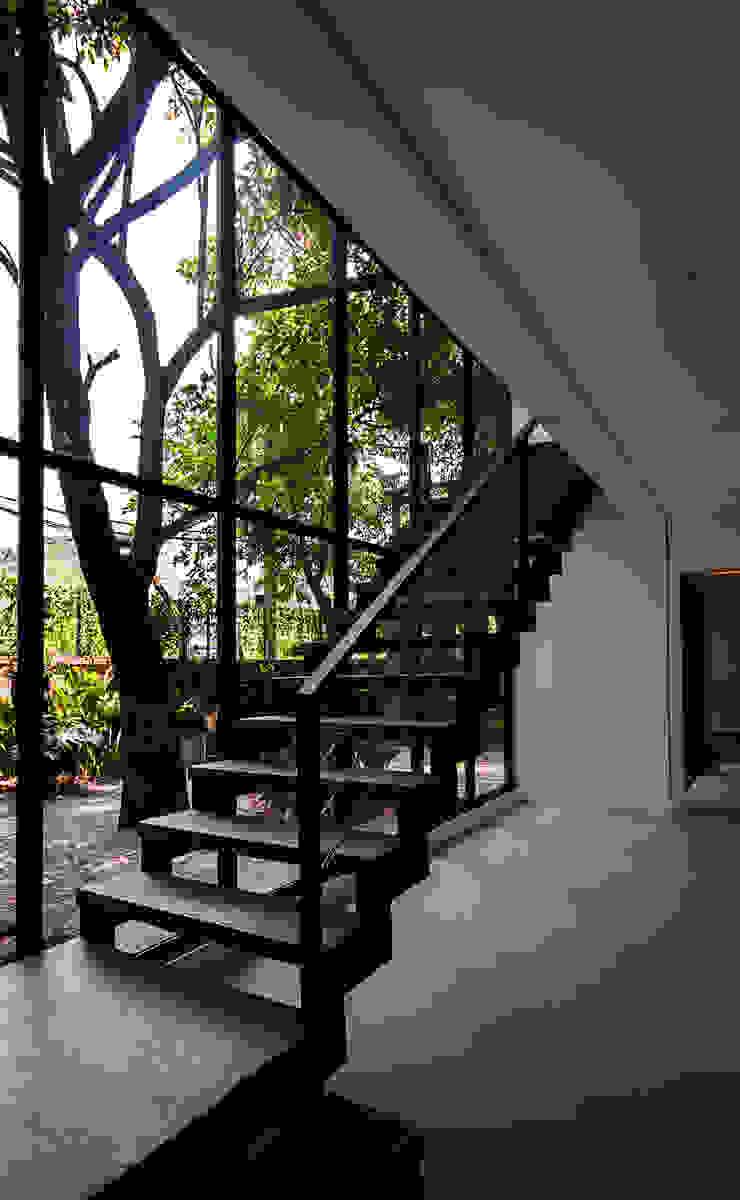 Modern Corridor, Hallway and Staircase by Alice Martins Flávio Butti Modern