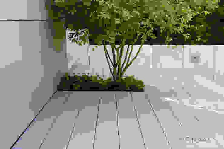 Felsenbirne eingepasst in klare Formen Moderner Garten von dirlenbach - garten mit stil Modern