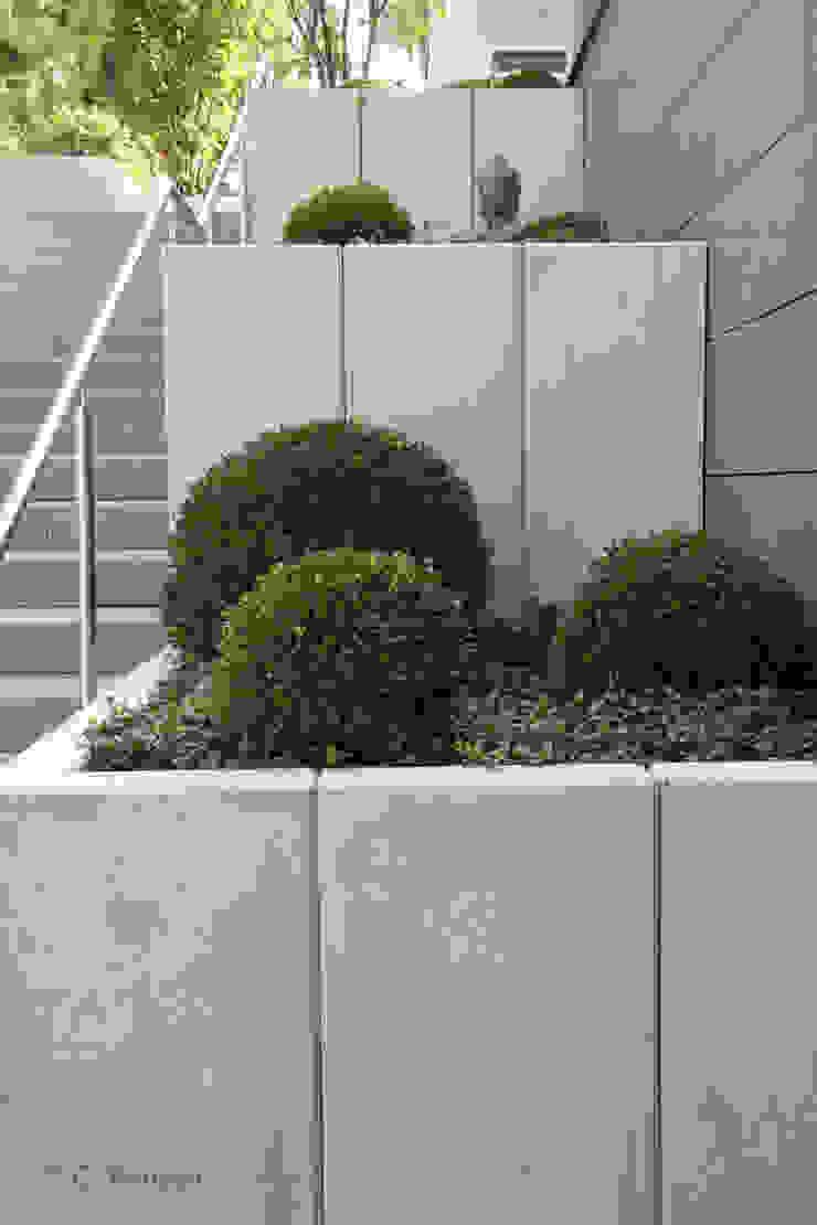 Terrassierte Beete neben Treppenaufgang Moderner Garten von dirlenbach - garten mit stil Modern