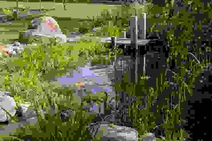 Estanque Jardines de estilo moderno de jardinista Moderno