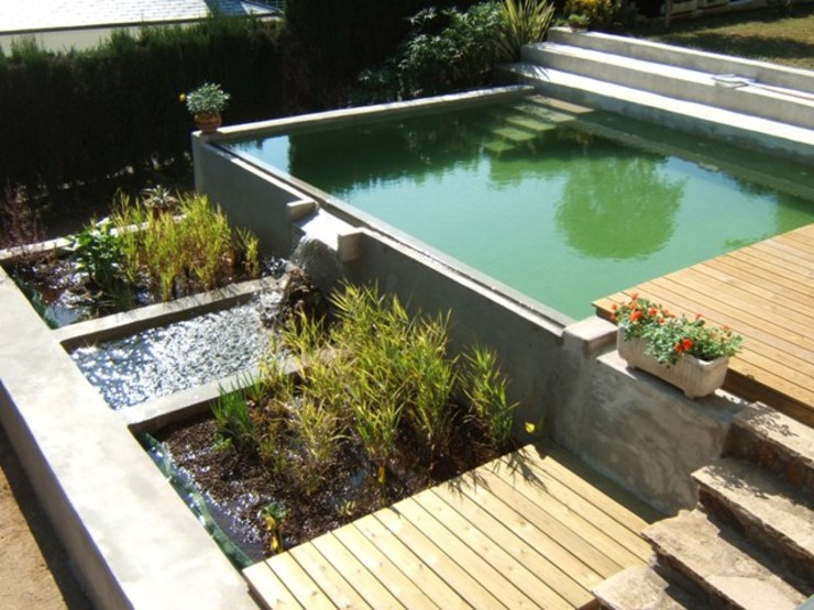 Modern Pool by jardinista Modern