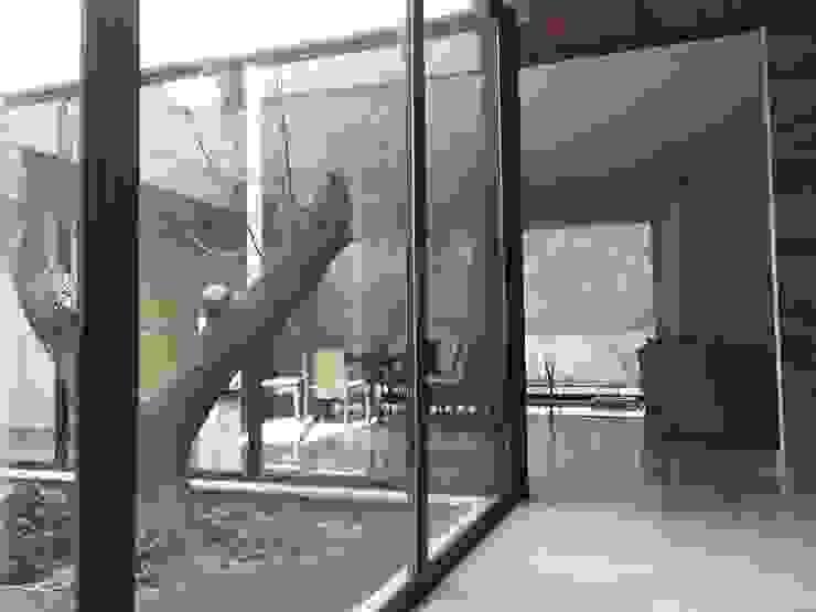 Jardín interior Pasillos, vestíbulos y escaleras modernos de Diez y Nueve Grados Arquitectos Moderno