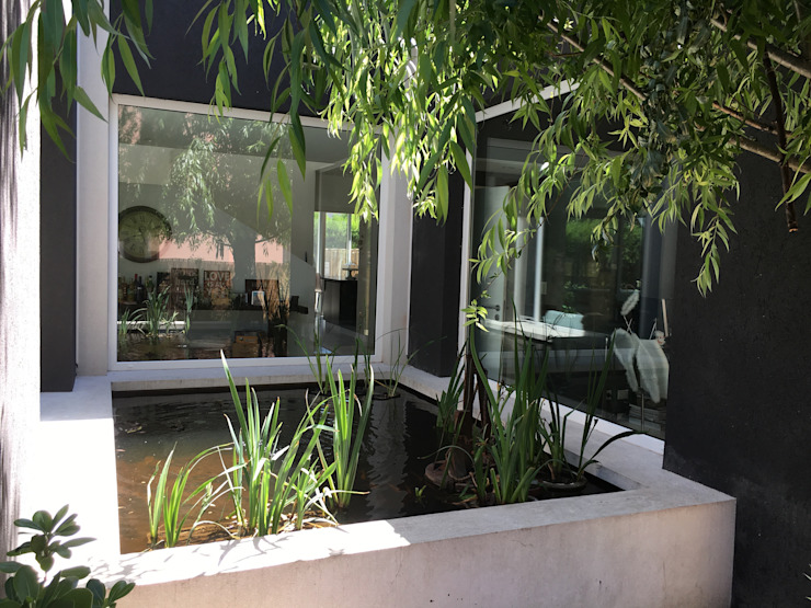 Modern garden by MFARQ - Tomas Martinez Frugoni Arq Modern