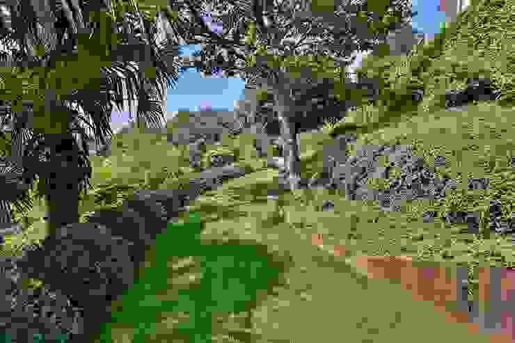 Jardins minimalistas por homify Minimalista