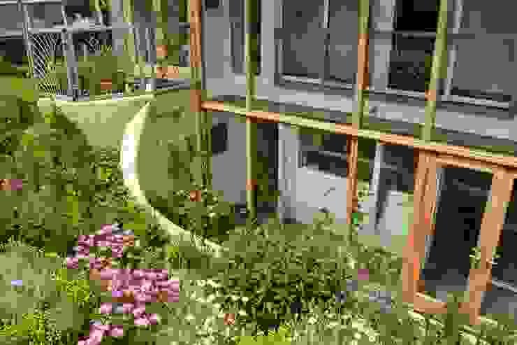Porthcothan Responsive Home Innes Architects 庭院
