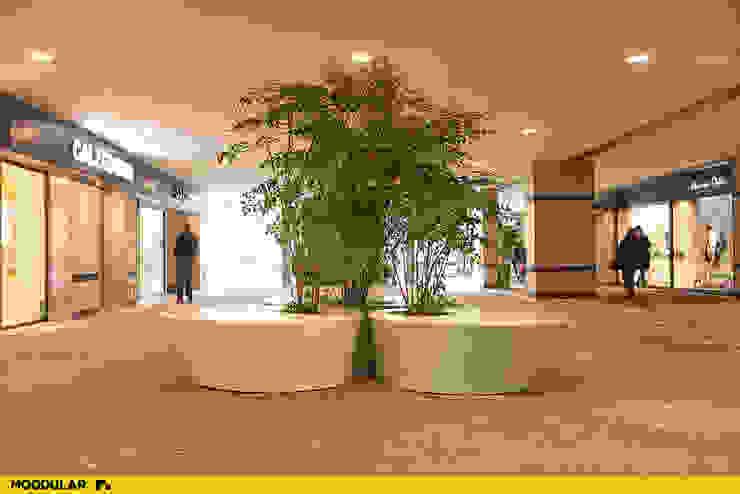 Vasos no Forum Viseu produzidos pela Moodular Centros Comerciais modernos por MOODULAR Moderno