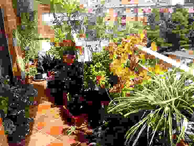 Moderner Balkon, Veranda & Terrasse von Filippo Fiori Architetto Modern
