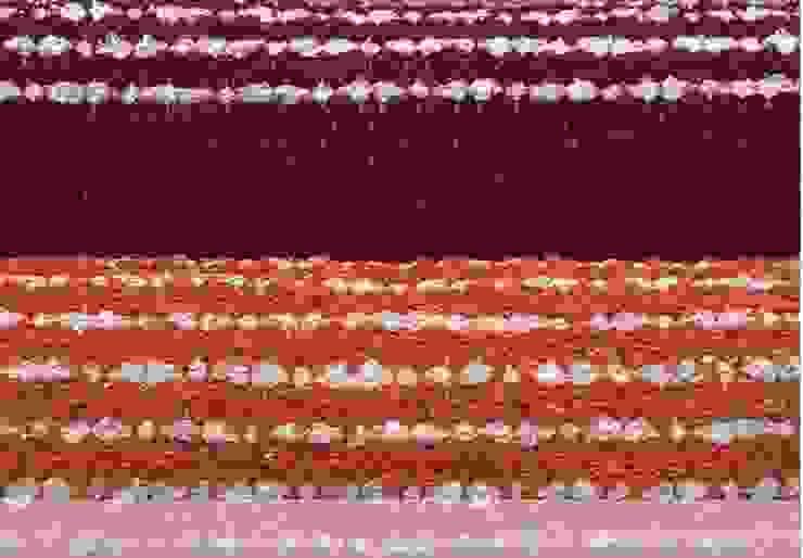 Carpet Sense – Naturally at home por Carpet Sense, Lda Rústico