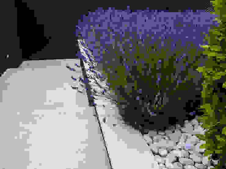 Jardin moderne par avidra Moderne