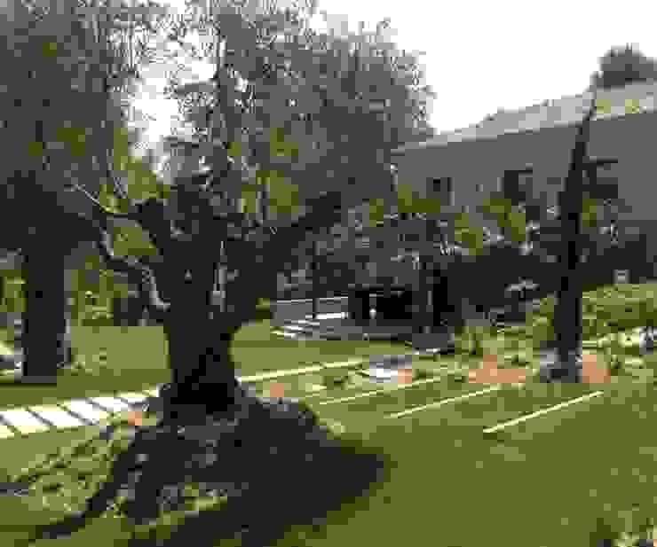 Сад в стиле модерн от HORTUS CONCEPT Модерн