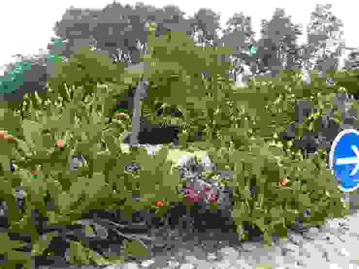 Bompas Wiricactus Jardin original