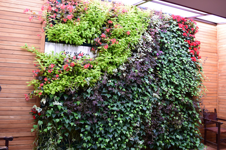 Jardin rustique par Verde & Verde Ingenieros & Arquitectos SAS Rustique