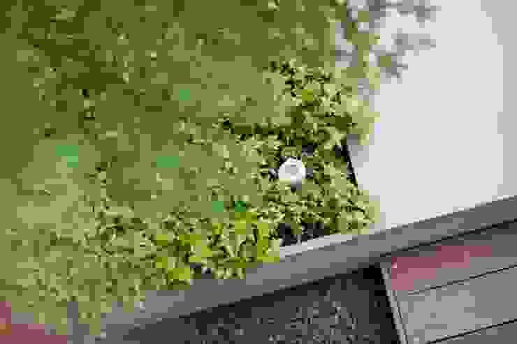 Balcones y terrazas de estilo moderno de Ecologic City Garden - Paul Marie Creation Moderno